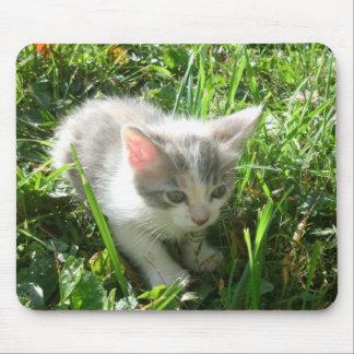 かわいく若い子ネコ マウスパッド