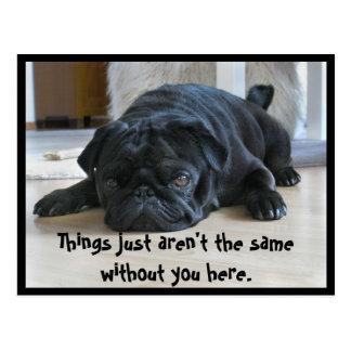 かわいく、不精で黒いパグの子犬の郵便はがき ポストカード
