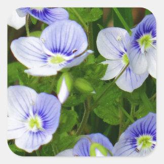 かわいく、小さく青い花 スクエアシール