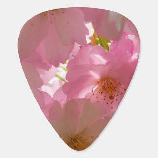 かわいらしいさくらんぼの花 ギターピック