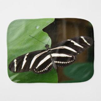 かわいらしいシマウマのLongwingの蝶バープクロス バープクロス