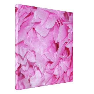 かわいらしいピンクのシャクヤクの花 キャンバスプリント