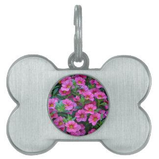 かわいらしいピンクのペチュニアの花 ペットネームタグ