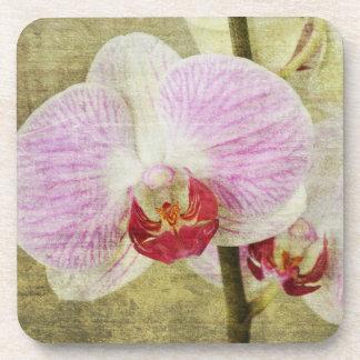 かわいらしいピンクの蘭の花のコースターセット コースター