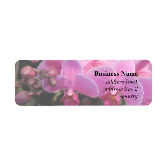 かわいらしいピンクの蘭の花 返信用宛名ラベル
