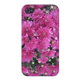 かわいらしいラズベリー色の秋のミイラのモダンなIphoneの場合 iPhone 4/4S カバー