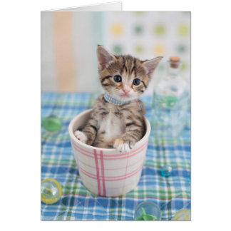 かわいらしいリボンを持つMunchkinの子ネコ カード