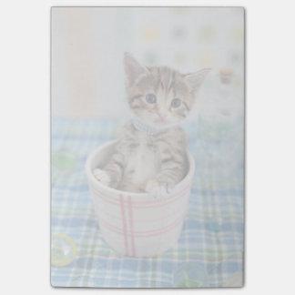 かわいらしいリボンを持つMunchkinの子ネコ ポストイット