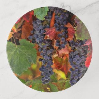 かわいらしい収穫のブドウ園の装身具のドレッサーの皿 トリンケットトレー