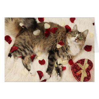 かわいらしい子猫のバレンタインのデザイン カード