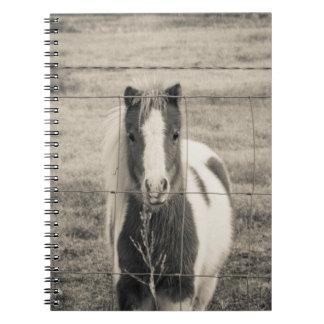 かわいらしい子馬 ノートブック