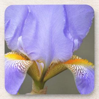 かわいらしい春のアイリス花 コースター