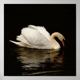 かわいらしい暗い白鳥のプリントのライトそう ポスター