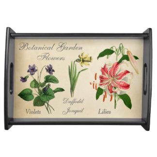 かわいらしい植物の花のバイオレットのラッパスイセンユリ トレー
