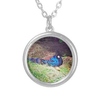 かわいらしい男性のpalawan孔雀キジの鳥のモデル シルバープレートネックレス