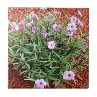 かわいらしい紫色のメキシコペチュニアブッシュ タイル