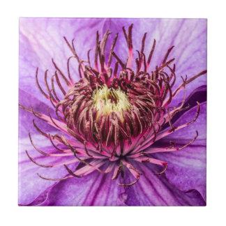 かわいらしい紫色クレマチスの花 タイル