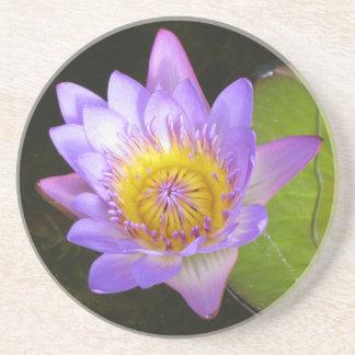 かわいらしい花のスイレンのコースター コースター