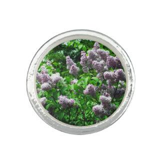 かわいらしい薄紫ブッシュ リング