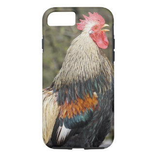 かわいらしい鶏のiPhoneの場合 iPhone 8/7ケース
