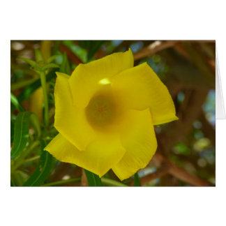 かわいらしい黄色オレアンダーの花が付いている空白のなカード カード