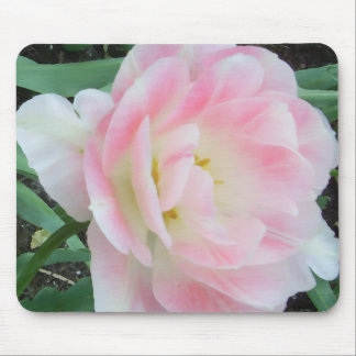 かわいらしく敏感でフェミニンな花CricketDiane マウスパッド