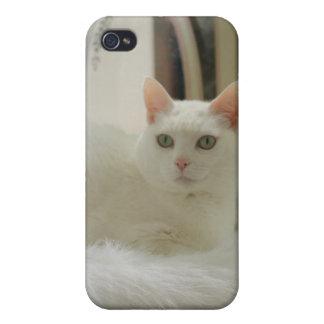 かわいらしく白い猫 iPhone 4 CASE