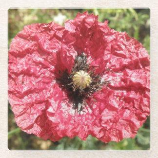 かわいらしく赤いケシの花のマクロガラスコースター ガラスコースター