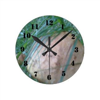きのこ ラウンド壁時計