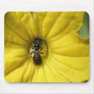 きゅうりの花のマウスパッドで働いている小さい昆虫 マウスパッド