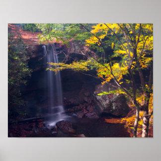 きゅうりは、Ohiopyleの州立公園、ペンシルバニア落ちます ポスター