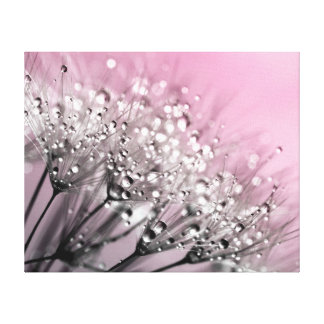 きらめくな露のタンポポの綿菓子のピンク キャンバスプリント