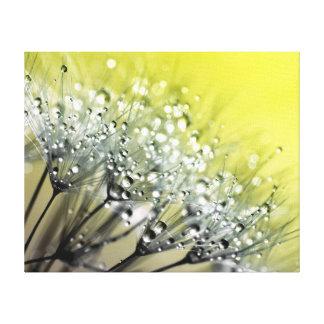 きらめくな露のタンポポの黄色の背景 キャンバスプリント