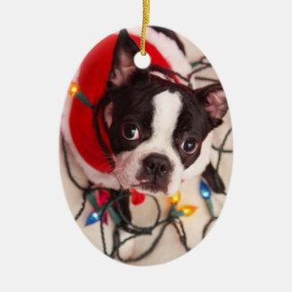 きらめくライトオーナメントのボストンテリア犬 セラミックオーナメント