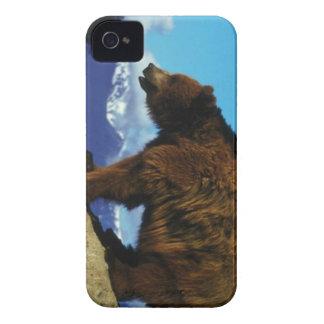 くまのiphone 4ケース Case-Mate iPhone 4 ケース