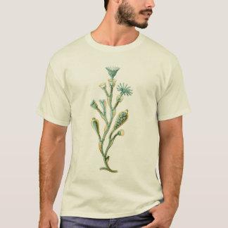 くらげ- Obeliaのgeniculata Tシャツ
