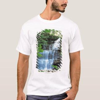 くる病の谷間の州立公園の滝、 Tシャツ