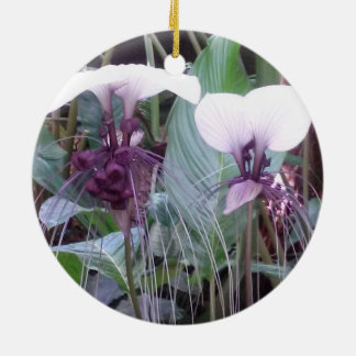 こうもりの花の蘭の円のオーナメント セラミックオーナメント