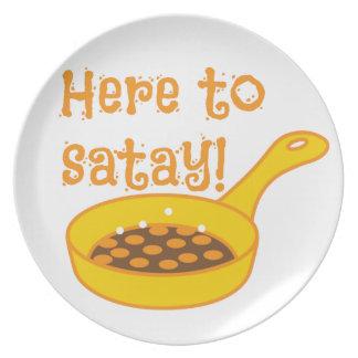 ここにフライパンのSATAYの料理に プレート