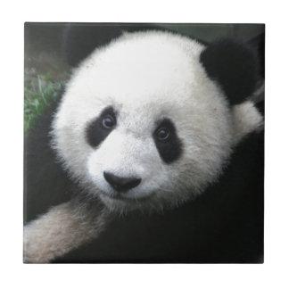 ここに赤ん坊のパンダの幼いこども見ています タイル