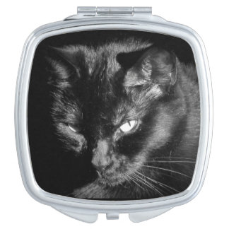 ここに黒猫見ています