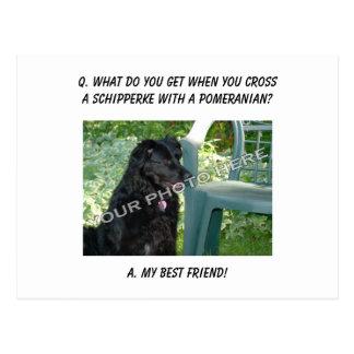 ここのあなたの写真! 私の親友のスキッパーキの組合せ ポストカード
