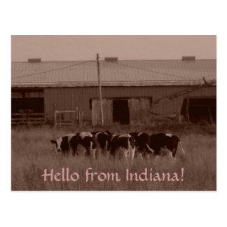 こんにちはインディアナから! ポストカード