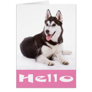 こんにちはシベリアンハスキーの小犬のブランクのメッセージカード カード