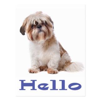 こんにちはシーズー(犬)のTzuの小犬-あなたの友人の考えること ポストカード