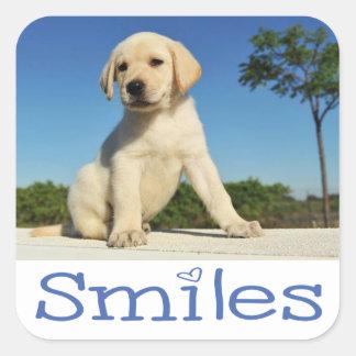 こんにちはスマイルの黄色いラブラドル・レトリーバー犬の小犬 スクエアシール