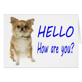 こんにちはチワワの小犬のブランクNotecard カード