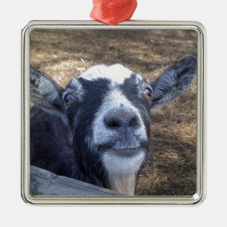 こんにちはフレンドリーなヤギ メタルオーナメント