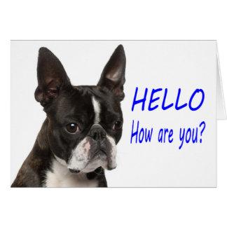 こんにちはボストンテリアの小犬Notecard カード