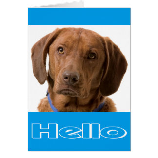 こんにちはラブラドル・レトリーバー犬の小犬のメッセージカード カード